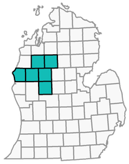 A map of Michigan highlighting Lake, Mason, Mecosta, Missaukee, Osceola, and Wexford counties